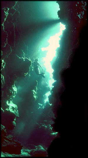 Deep furrows and creavaces in the reef structure allow divers to penetrate into the layers recording all of the past behaviors of the coral reef creatures. © http://www.thread-of-awareness-in-chaos.com/order.html